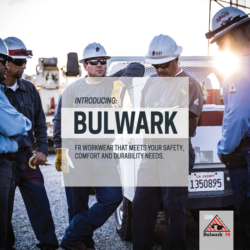 Introducing Bulwark
